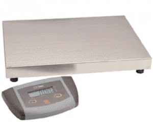 ES Series Low Profile Bench Scales