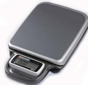 Dual Range Portable Clinical Scale